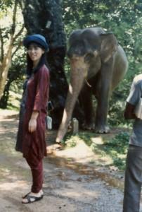南インドで象とともに
